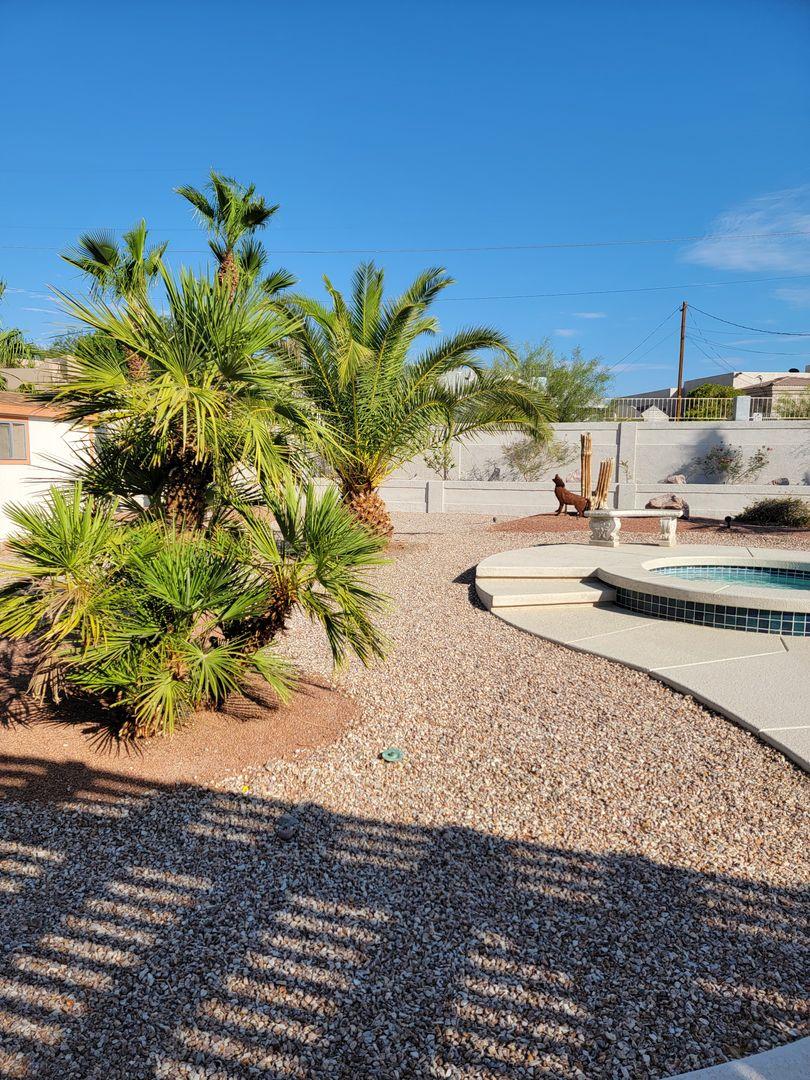 3910 Highlander Avenue Lake Havasu City AZ 86406 - Photo 6