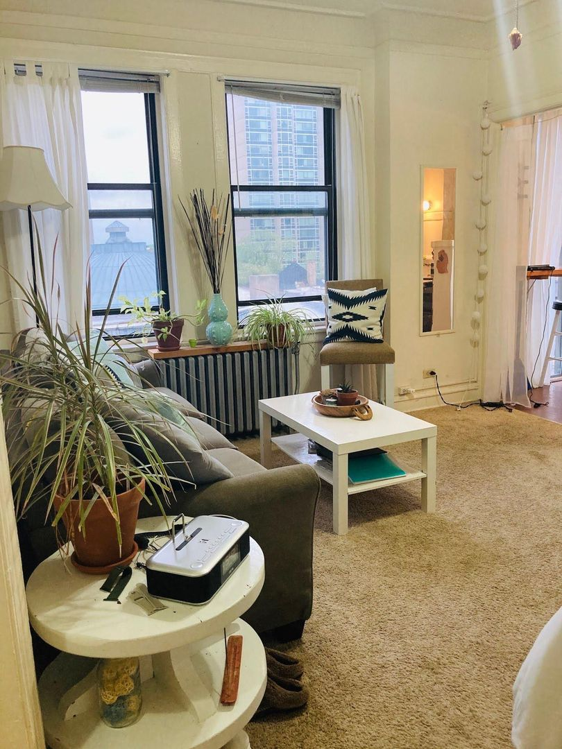 420 West Wrightwood, Chicago, IL - 985 USD/ month